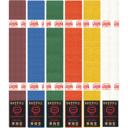 ADULT ONE-COLOR BELT 290cm