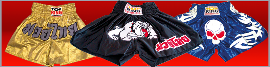 Mma y Thai-Boxing